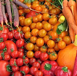 Organic vegetables from Pinestead Farm, Franconia, NH